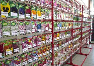 98d015fe35a3e Oferujemy szeroki wybór nasion